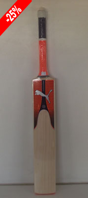 Cricket Company: Cricket Bats : Puma Evo 3.17