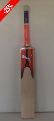 Cricket Company: Cricket Bats : Puma Evo 4.17